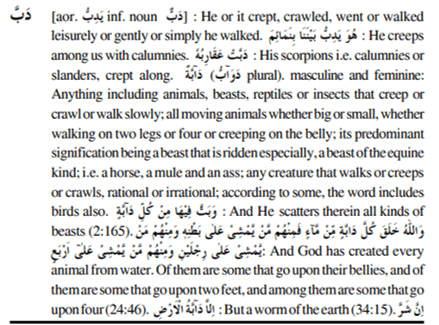 daabah dictionary